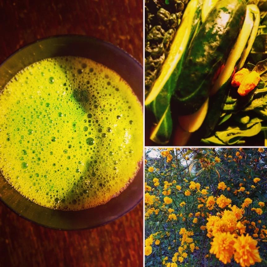 collage green juice turbo boost cencecicin.com