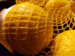 limoni cencecicin.com