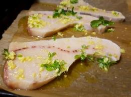 condizenzero cencecicin pesce