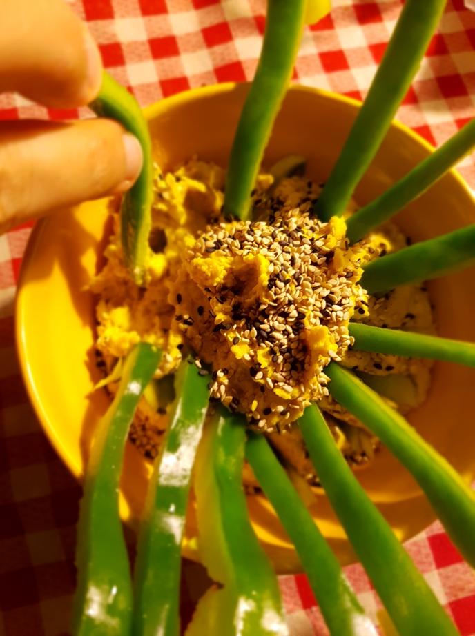 hummus sole cencecicin 08